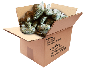 """The ad said 'We Ship Anything!' The key word is 'Anything.' Then I get arrested? That's false advertising, bro,"" says Steamboat's Jay Puffer, who was arrested for shipping $500,000 worth of marijuana to himself."