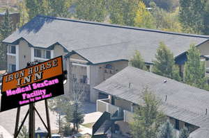 "Steamboat Springs City Council is considering novel ways to turn the debt-laden Iron Horse Inn into a profitable venture. An artist's rendering shows the proposed ""Medical SexCare Facility"" envisioned by some council members."